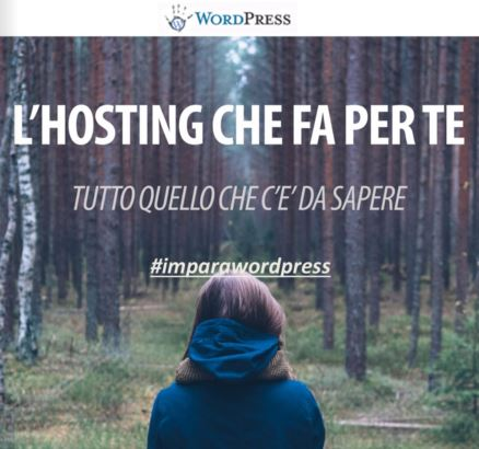 Pay with a Tweet to download L\'HOSTING CHE FA PER TE - la guida definitiva